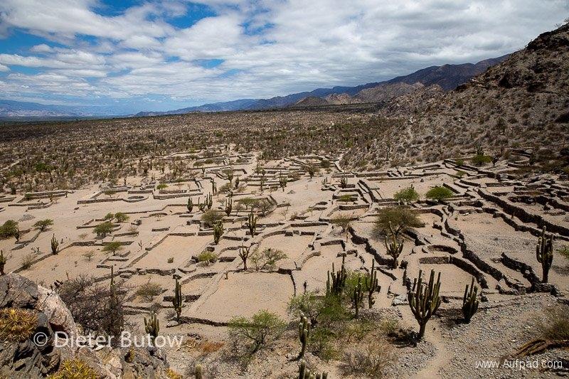 Argentina - Chaco to Cafayate-26