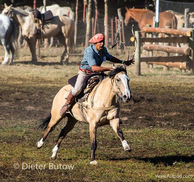 Argentina - Gauchos and Parque Lanin-7