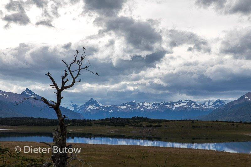 Argentina Perito Moreno to Fitzroy-24