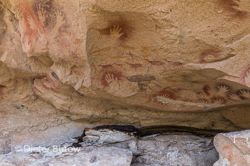 Argentina 12 PN Moreno to Cueva de Manos-43