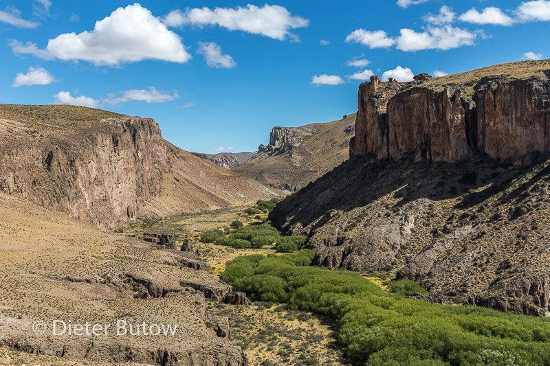 Argentina 12 PN Moreno to Cueva de Manos-45