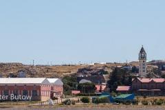 Argentina 14- Rockhoppers at Deseado and Bahia Bustamante-1