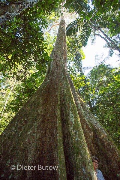 Bolivia Madidi Jungle Tour-42