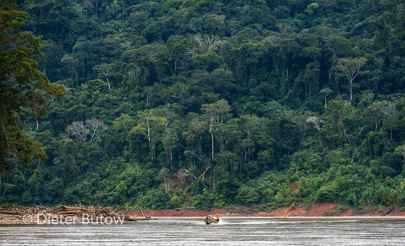 Bolivia Madidi Jungle Tour-69