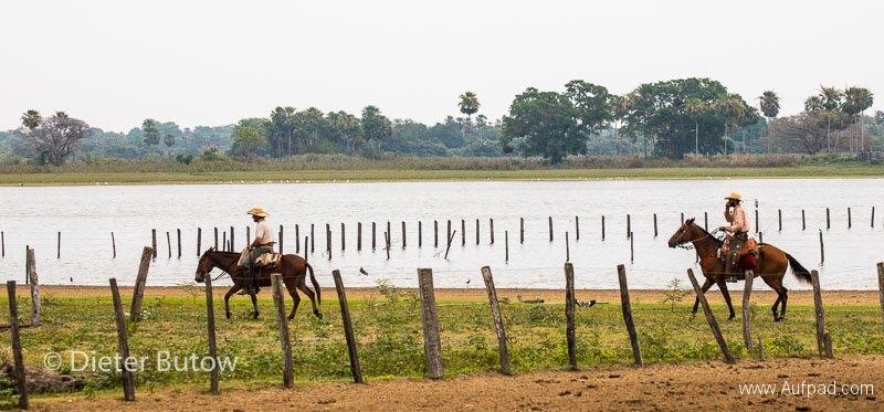 Brasil Rio Miranda to Corumba-56