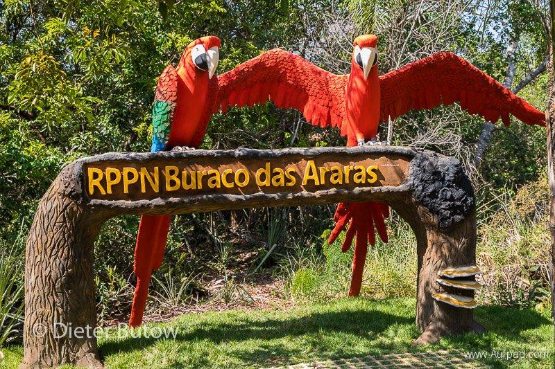Brasil South Panatanal_Bonito-9