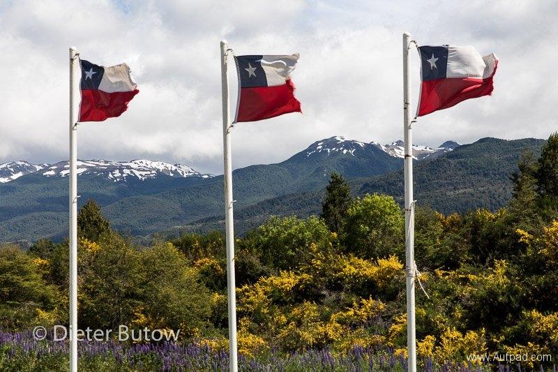 Chile Volcan Chaitén to Glaciar San Rafael-54