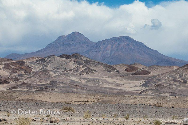 Chile El Tatio to PN Llanos Challe-15