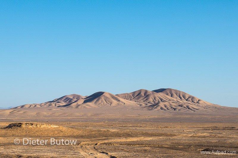 Chile El Tatio to PN Llanos Challe-25