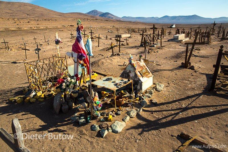 Chile El Tatio to PN Llanos Challe-26