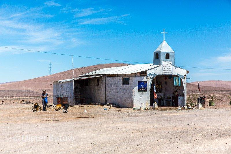 Chile El Tatio to PN Llanos Challe-30
