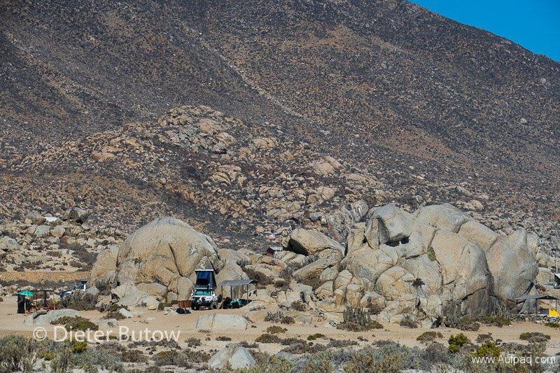 Chile El Tatio to PN Llanos Challe-36