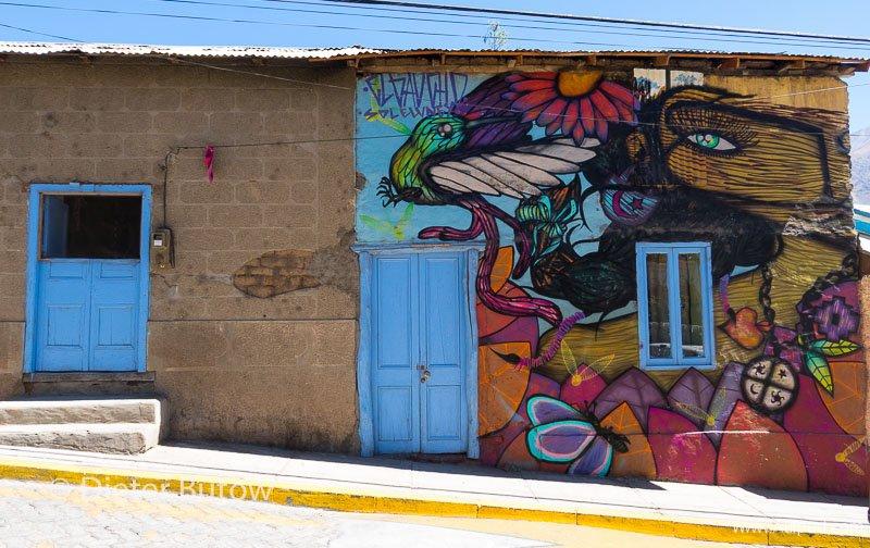 Chile PN Las Chinchillas and Coast-8