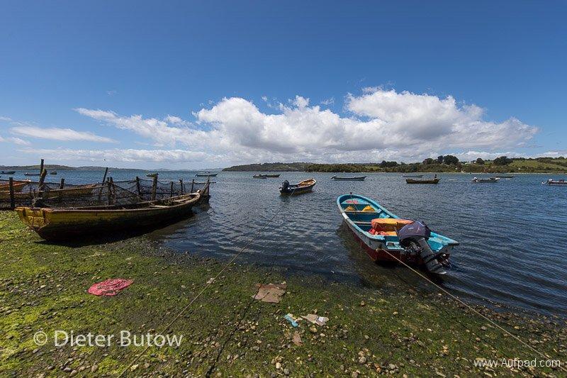 Chile Pumalin and Chiloé-63