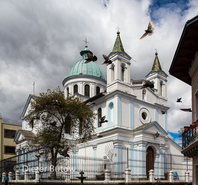 Ecuador 1b Cotopaxi & Quito -124