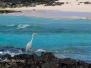 Galapagos B 1-3