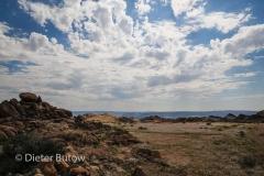 Namib-Kalahari Apr2014-102