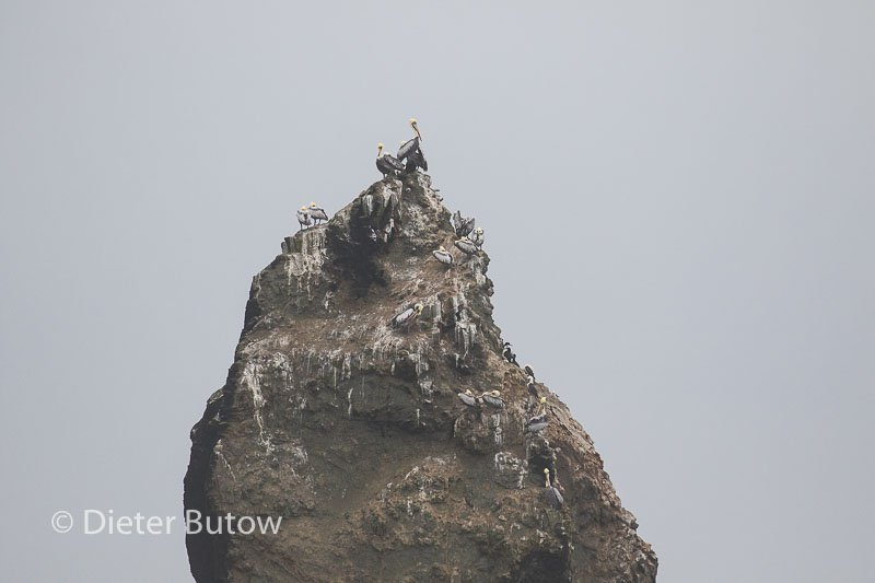Peru Cusco to Cordilliera Blanca-145