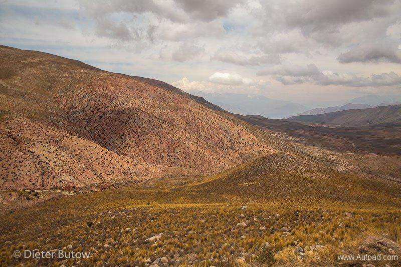Peru Colcha Cañon and South Coast-1