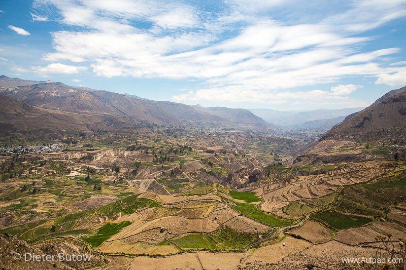 Peru Colcha Cañon and South Coast-14