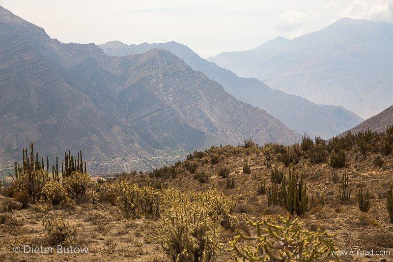 Peru Colcha Cañon and South Coast-2