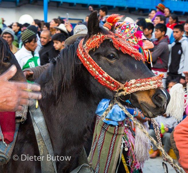 Peru -Paucartambo Festival Virgen del Carmen-38