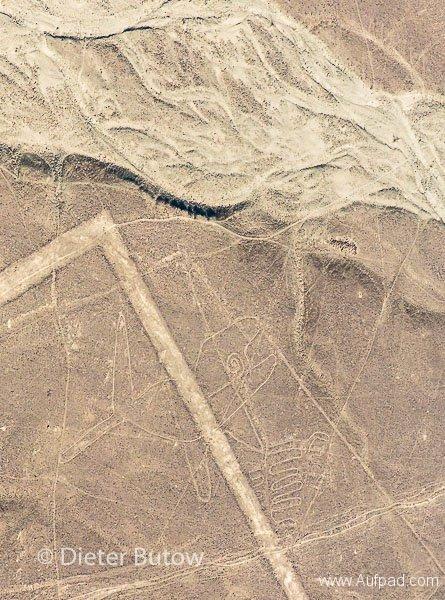 Peru Paracas to Nazca-39