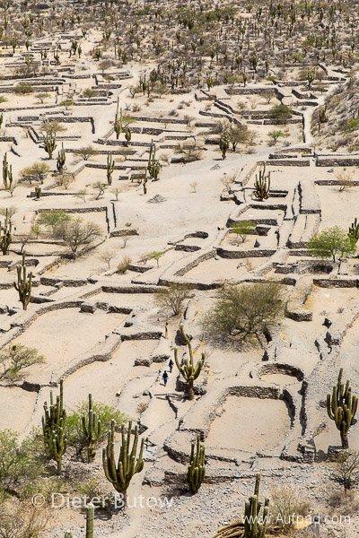 Argentina - Chaco to Cafayate-27