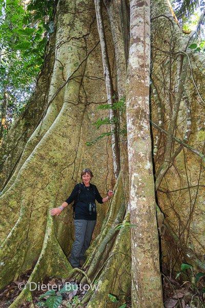 Bolivia Madidi Jungle Tour-16
