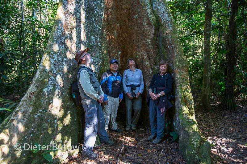 Bolivia Madidi Jungle Tour-41