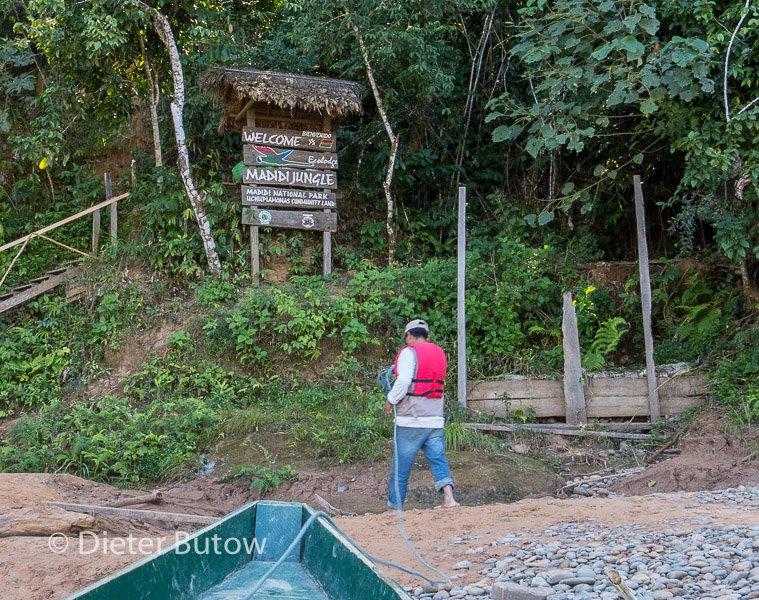 Bolivia Madidi Jungle Tour-9