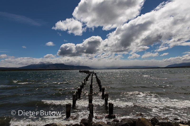 Chile Torres-Pto Natales-Pt Arenas-29