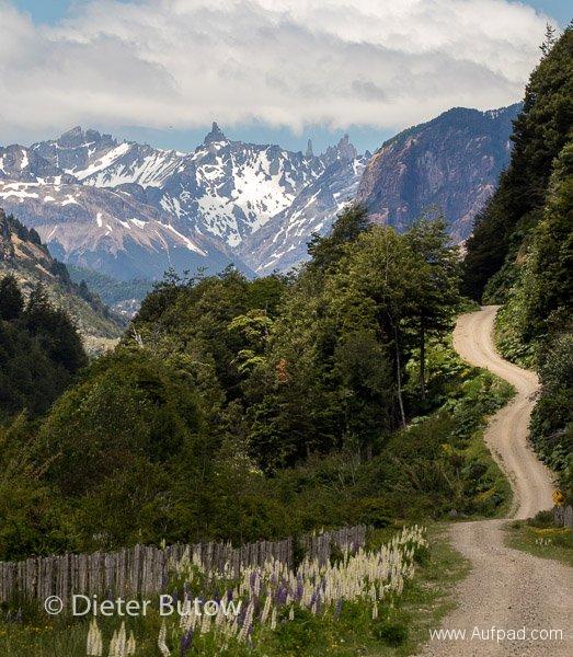 Chile Volcan Chaitén to Glaciar San Rafael-30