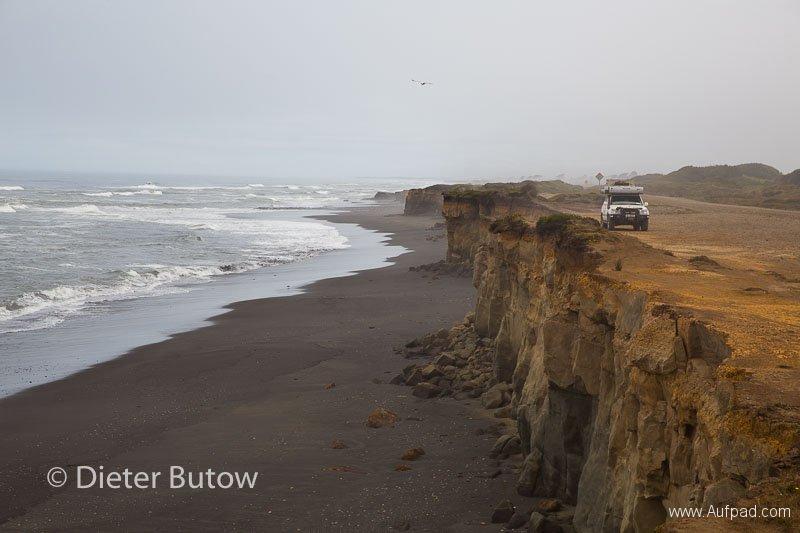Chile Araucarias Valdivia Puerto Varas-10