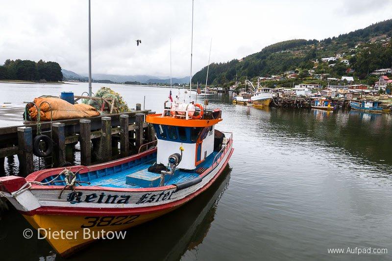 Chile Araucarias Valdivia Puerto Varas-15