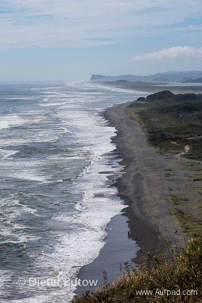 Chile Araucarias Valdivia Puerto Varas-8