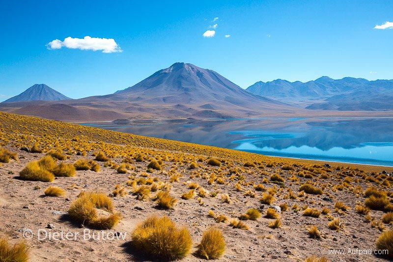 Chile El Tatio to PN Llanos Challe-17