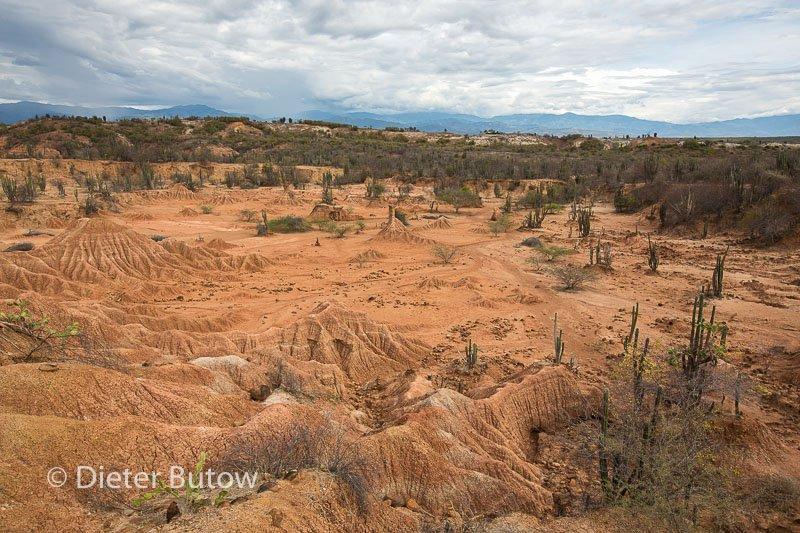 Col 3 Desierto de Tatacoa and the polluted Rio Bogota-106