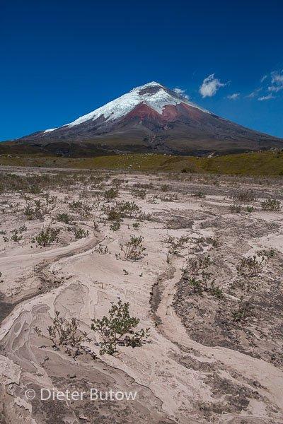 Ecuador 1b Cotopaxi & Quito -111