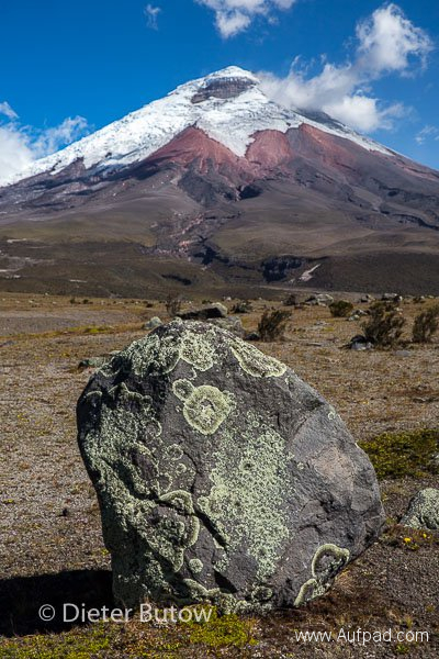 Ecuador 1b Cotopaxi & Quito -105