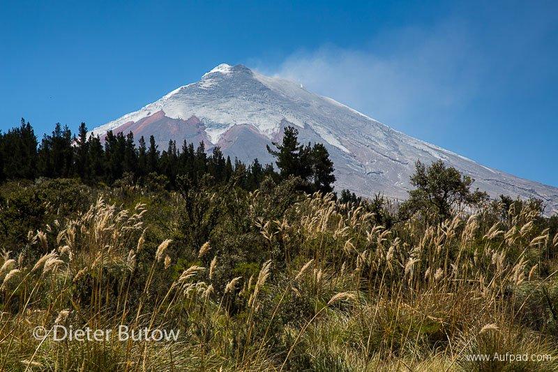 Ecuador 1b Cotopaxi & Quito -109