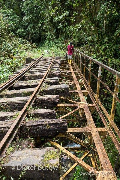 Ecuador Coast Jungle train & Tulcan-161