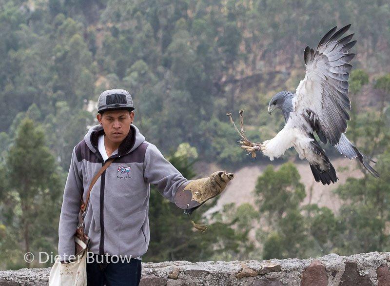 Ecuador Otavalo Parque Cóndor -121