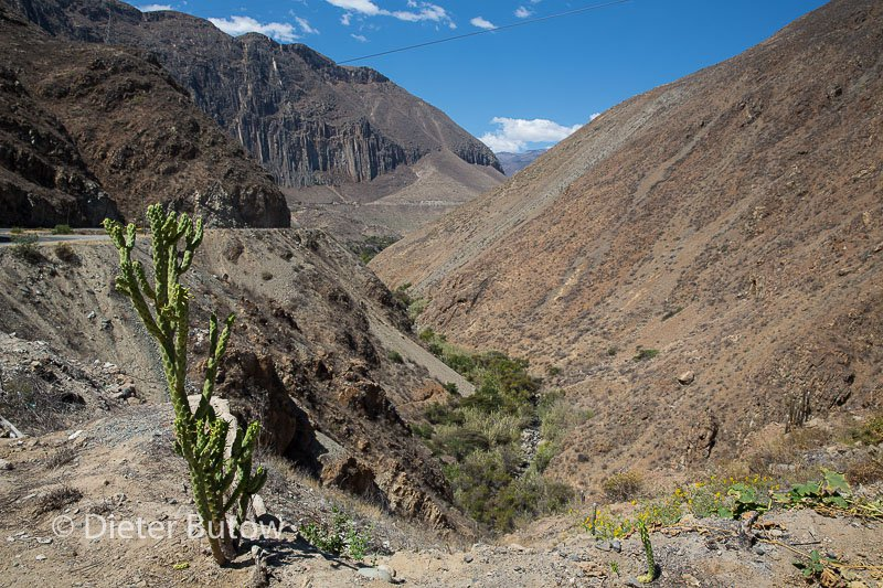 Peru Cusco to Cordilliera Blanca-150