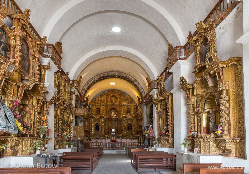 Peru Colcha Cañon and South Coast-16