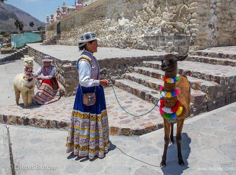 Peru Colcha Cañon and South Coast-17
