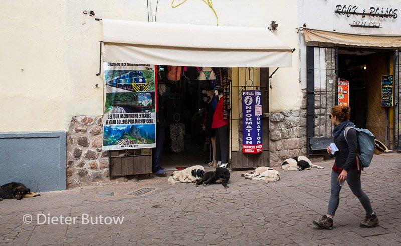Peru Cusco and Saqsaywaman Ruins-18
