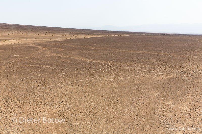 Peru Paracas to Nazca-36