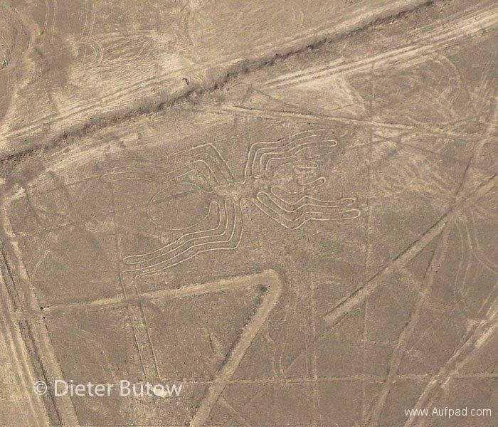 Peru Paracas to Nazca-46